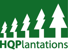 Invitation to Offer   HQplantations sustainably manages 330000 hectares of forest throughout the...