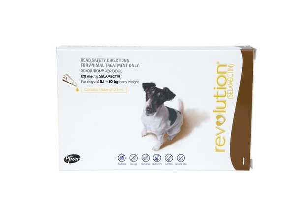Revolution Flea & Heartworm Control for Dogs 5.1-10kg - Single Dose