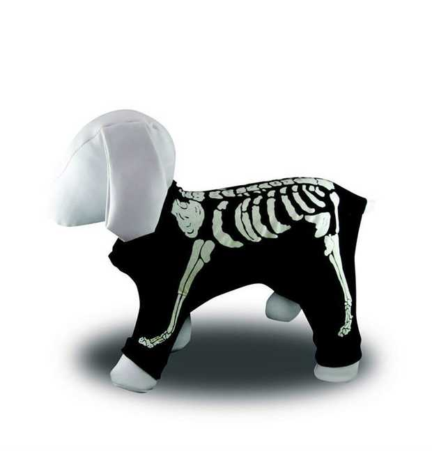Glow in the Dark Skeleton Dog Costume for Halloween [Size: 4]