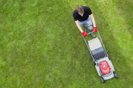 TERRY's LAWNMOWING