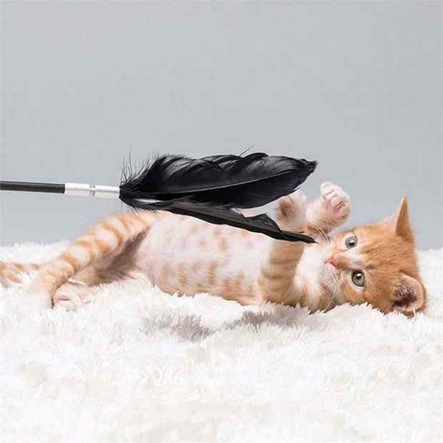 Pidan Shake Shake Suction Cat Teaser with Replaceable Black Feathers