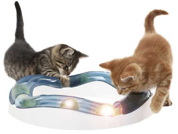 Catit Senses Speed Circuit Interactive Cat & Kitten Toy