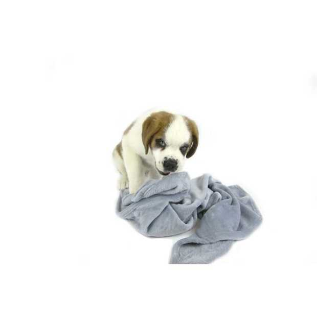 When it comes to snuggling up with your pet, you can't beat the T & S Snuggle Pet Blanket Blue. Big...