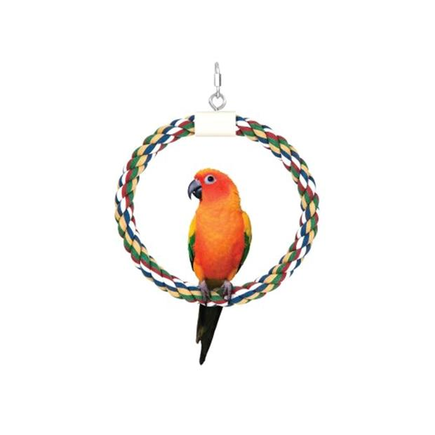 jw insight swing n perch ring  large   JW Insight toy&accessories;   pet supplies  Product Information:...