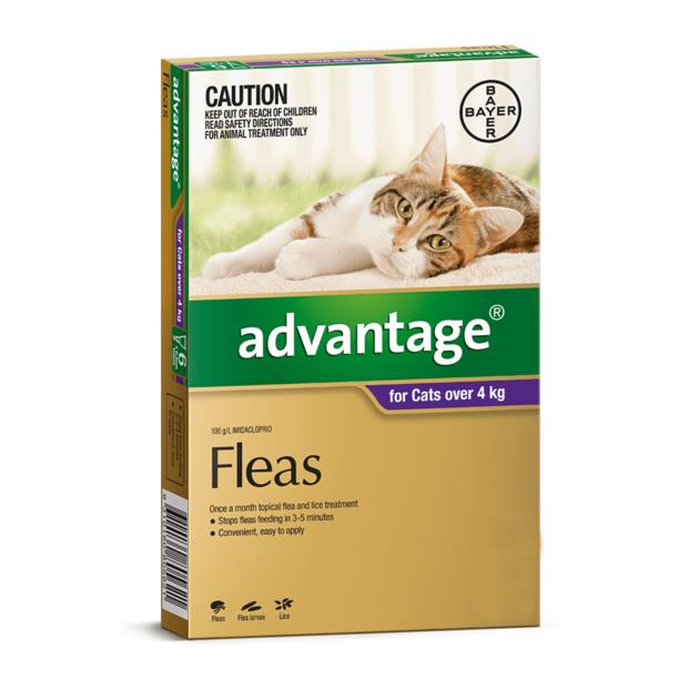 advantage cat large purple  4 pack | Advantage cat Flea&Tick; Control | pet supplies| Product...