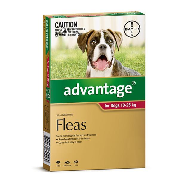 advantage dog large red  4 pack | Advantage dog Flea&Tick; Control | pet supplies| Product Information:...