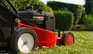 BEAUTIFUL MAN HOME & GARDEN SERVICE    Western & Northern Suburbs     Lawns Cut &...