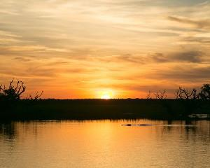 Get out on the water at sunset and explore the Corroboree Billabong. Just 90 minutes from Darwin in the...