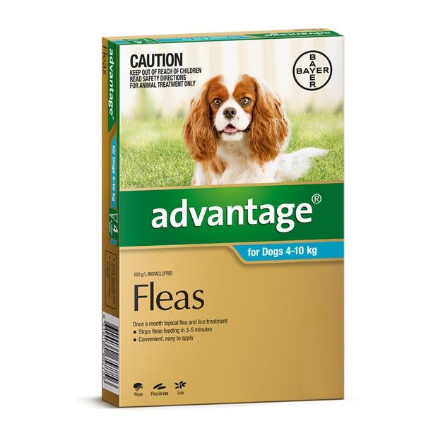 advantage dog medium aqua  4 pack | Advantage dog Flea&Tick; Control | pet supplies| Product...