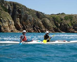 Beginners and experienced paddlers will find this area a real adventure! Sea life abounds with sea...