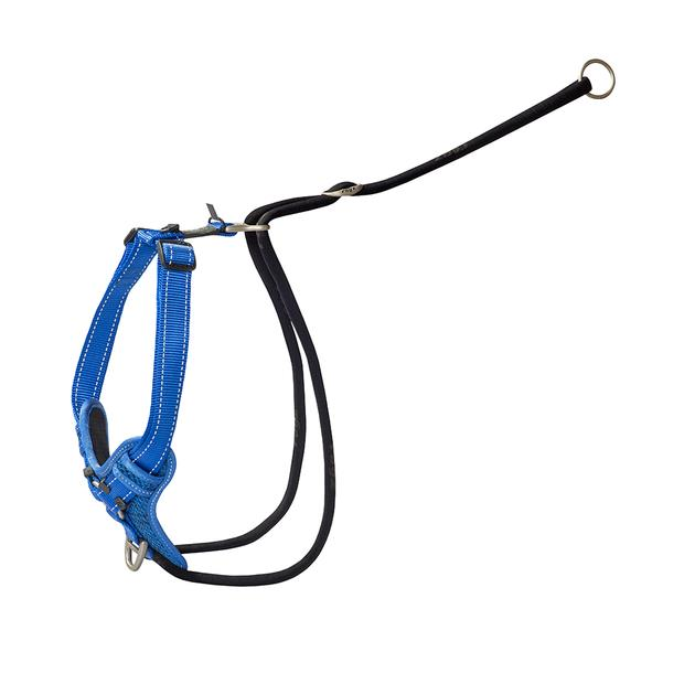 rogz harness control stop pull blue  medium | Rogz dog | pet supplies| Product Information:...