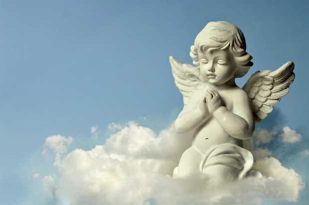 SANDERCOCK, Barbara (Dot)    Loved and loving mother of Gail, Brendan (deceased), gran and...