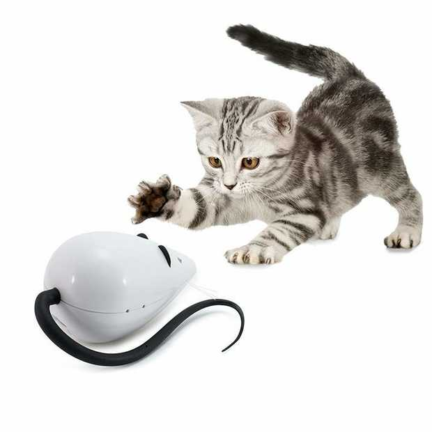 FroliCat Rolorat Automatic Interactive Cat Teaser Toy
