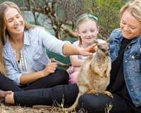 For the ultimate zoo experience, go on safari just outside of Adelaide and go behind the scenes to meet...