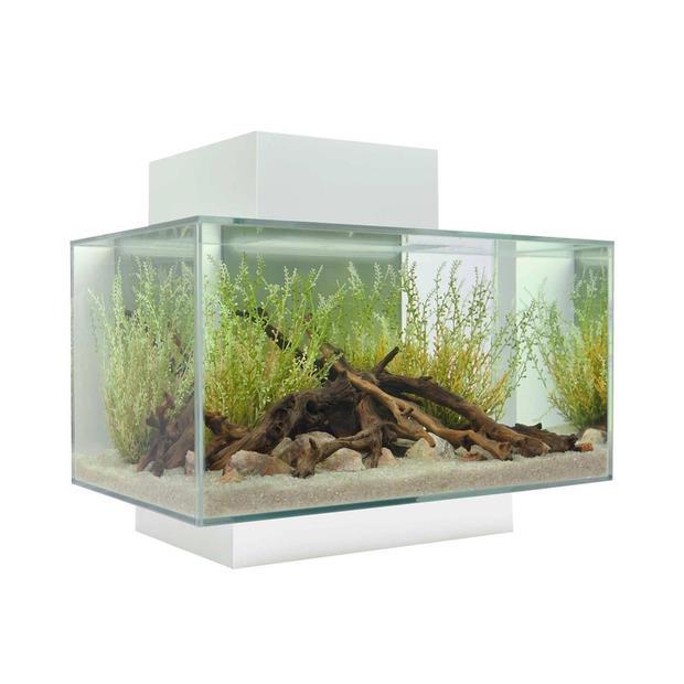 fluval edge 2.0 aquarium white  23L | Fluval | pet supplies| Product Information:...
