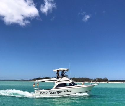 Bertram 25' Flybridge