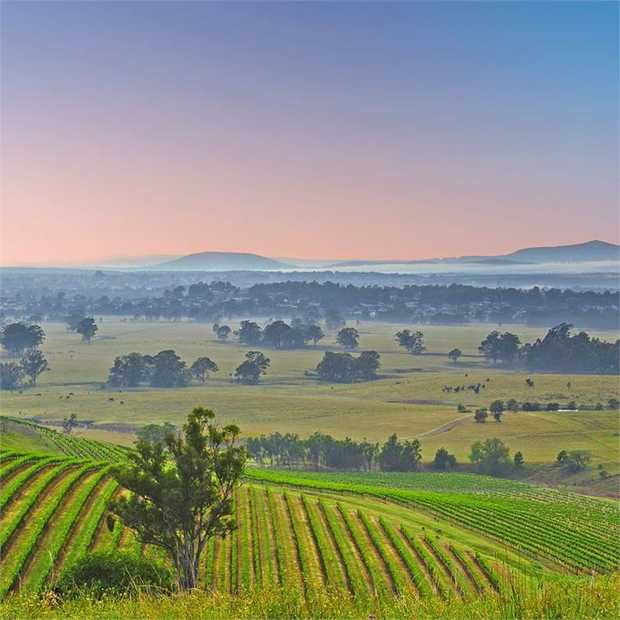 Château Élan brings a little piece of Europe to the Hunter Valley with laidback country elegance and...