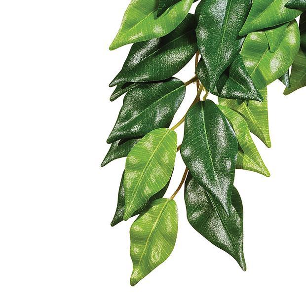exo terra forest plant ficus  medium | Exo Terra | pet supplies| Product Information:...