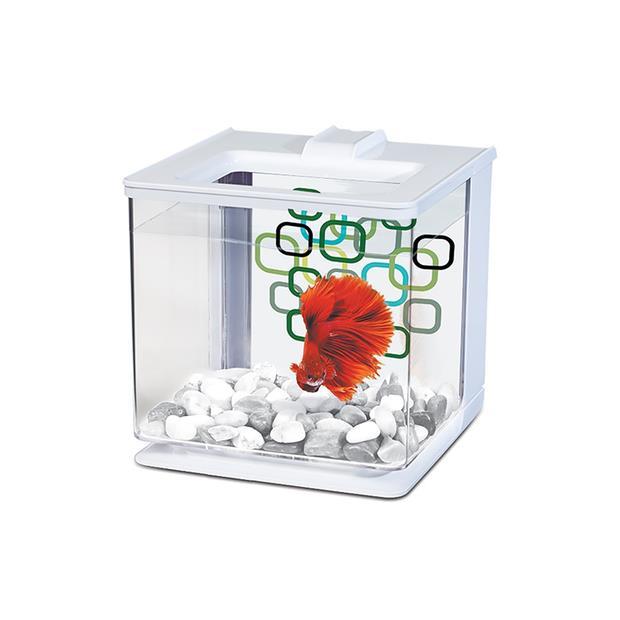 marina ez care betta kit white  2.5L | Marina | pet supplies| Product Information:...