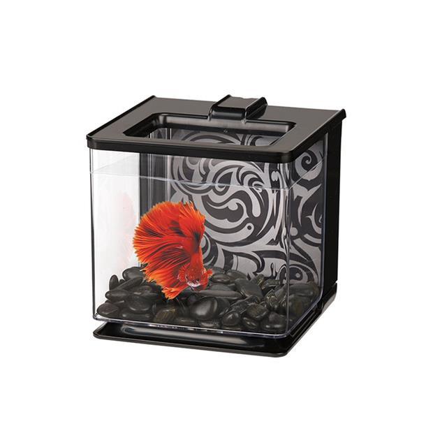 marina ez care betta kit black  2.5L | Marina | pet supplies| Product Information:...