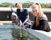 Be brave and get up close and personal with sharks and sting rays and Irukandji Shark and Ray...