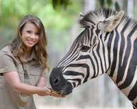 Get ready for exciting animal encounters at Australia Zoo, where youll have return transfers from...