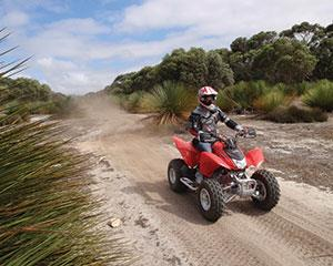 Feel the thrill of riding all terrain quad bikes on a three-hour extreme adventure around Kangaroo...