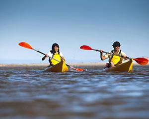 Grab a paddle and explore Kangaroo Islands Harriet River with a four-hour hire of a single kayak. You...