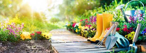AAA Abacus Gardening & Tree Service    Experienced...