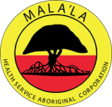 SENIOR RURAL MEDICAL / PUBLIC HEALTH PRACTITIONER