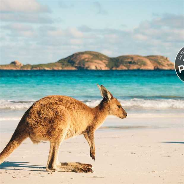 Uncover the rugged beauty of Western Australia on a 10-day tour through diverse landscapes, gold-rush...