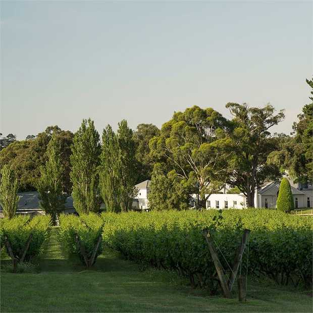 Hidden an hour from Melbourne, in the picturesque Mornington Peninsula wine region, Lancemore...