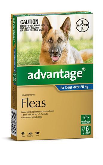 Advantage Flea Control for Dogs Over 25kg - 6-Pack