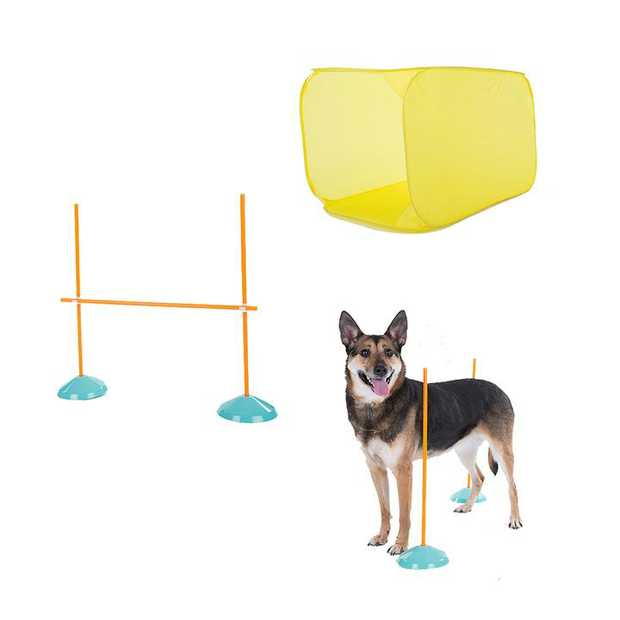 Outward Hound ZipZoom Indoor Agility Kit Dog Game