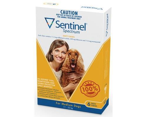Animals & Pet Supplies > Pet Supplies > Dog Supplies > Dog Flea & Tick Control