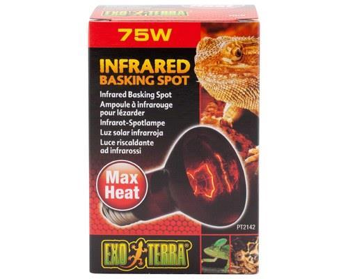 Animals & Pet Supplies > Pet Supplies > Reptile & Amphibian Supplies > Reptile & Amphibian Habitat...
