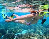 Explore dizzying heights and underwater worlds on this full day scenic flight tour from Perth to the...