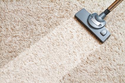 Carpet/Furniture Clean,   Gutters,   Flue,   Rubbish,   Window   Phone Wayne...
