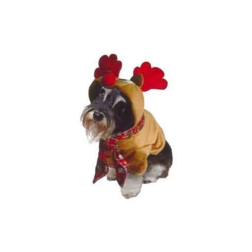 Reindeer Dog Costume [Size: 6]