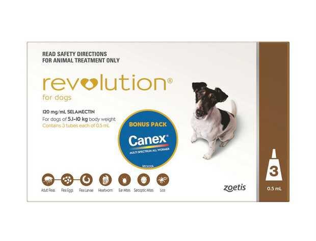 Revolution Flea, Worm & Heartworm Control for Dogs 5.1-10kg - 3 Pack + 1 Month BONUS