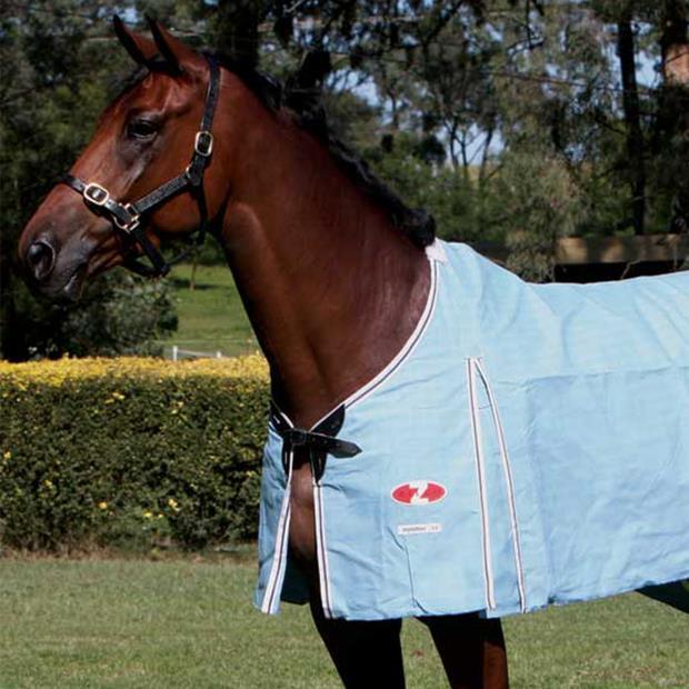 Zilco Hamilton Rug 198cm Pet: Horse Size: 2.4kg Colour: Blue  Rich Description: Originating in...