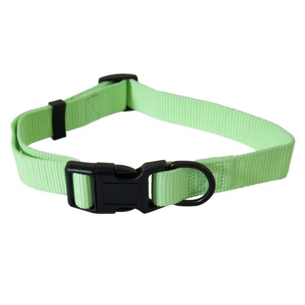 Aspen Pet Dog Collar Glow In The Dark Green Medium Pet: Dog Category: Dog Supplies  Size: 0kg Colour:...