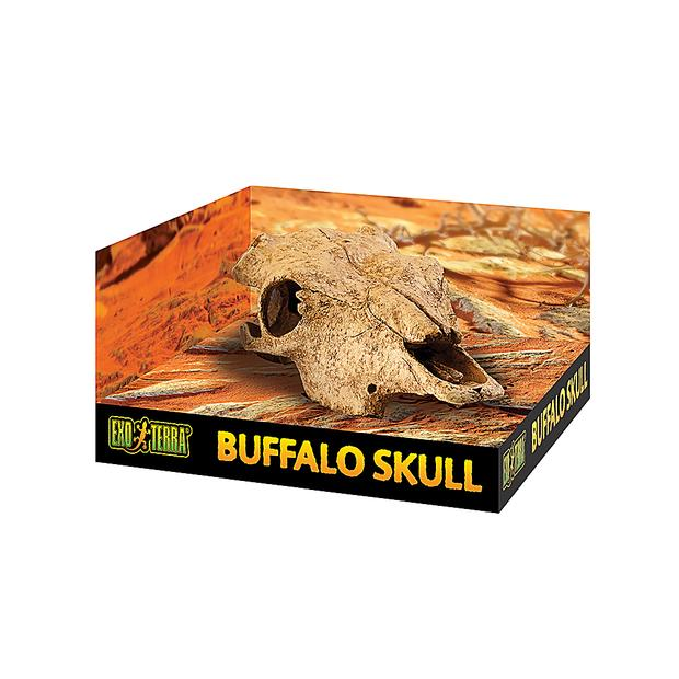 Exo Terra Buffalo Skull Each Pet: Reptile Category: Reptile & Amphibian Supplies  Size: 0.4kg  Rich...