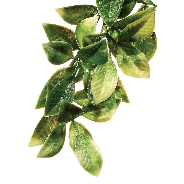 Exo Terra Forest Plant Mandarin Medium Pet: Reptile Category: Reptile & Amphibian Supplies  Size: 0.1kg...