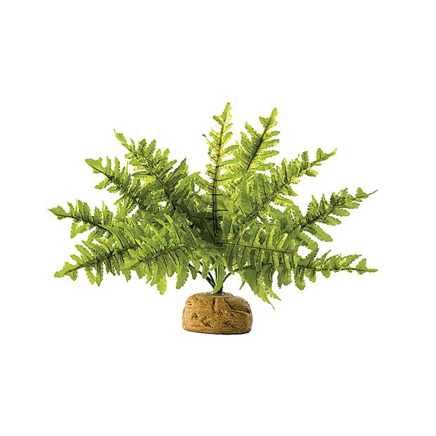 Exo Terra Boston Fern Medium Pet: Reptile Category: Reptile & Amphibian Supplies  Size: 0.2kg  Rich...