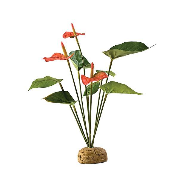 Exo Terra Exotic Anthurium Each Pet: Reptile Category: Reptile & Amphibian Supplies  Size: 0.2kg  Rich...
