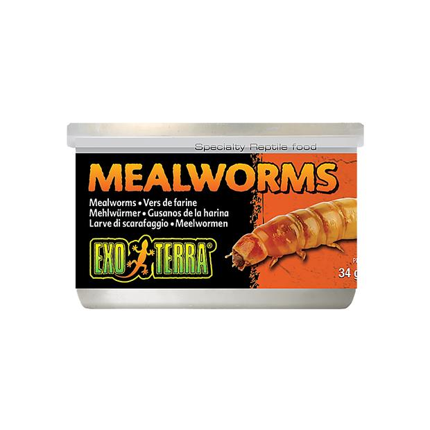 Exo Terra Mealworms 34g Pet: Reptile Category: Reptile & Amphibian Supplies  Size: 0.1kg  Rich...