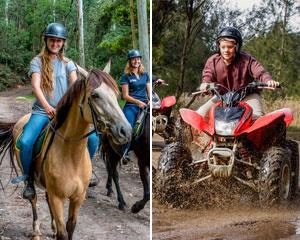 This two-hour horse riding and 1.5-hour quad biking combo is an adrenaline-fuelled adventure, just 40...