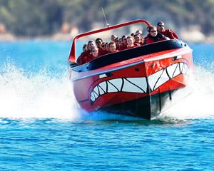 Experience the world's most beautiful harbour at full throttle, with sea spray in your face and the...
