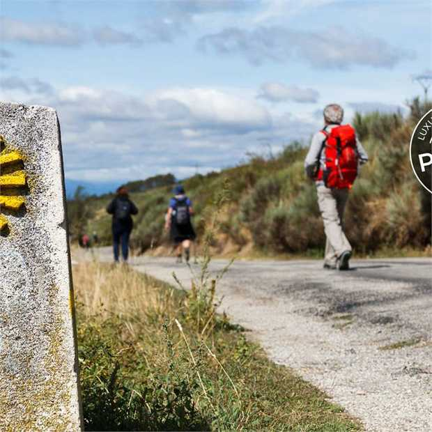 Follow in the footsteps of thousands of pilgrims on the centuries-old Camino Francés (or French Way)...